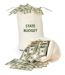 Bag with state budget
