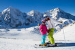 Skiing, winter sports - skiers on mountainside