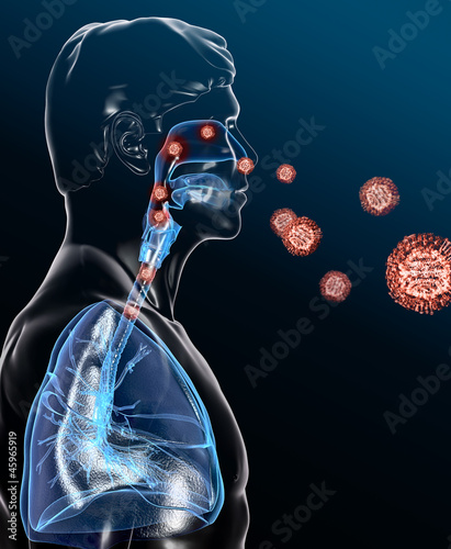 Rote Viren befallen den Atemwegstrakt