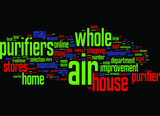 Whole House Air Purifiers Do They Exist poster