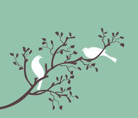 oiseaux sur branche blanc sur turquoise