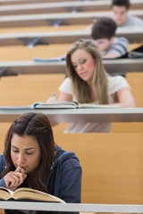 Students sitting while learning