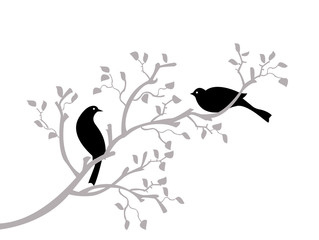 oiseaux noirs sur branche grise
