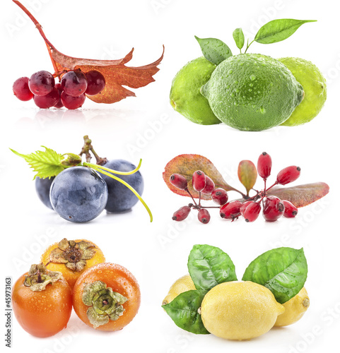 Collection of berry and fruit isolated on white background