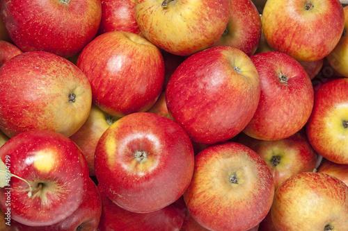 apples © Vera Kuttelvaserova