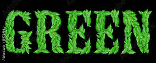 typography word green from leaves