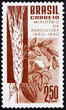 Postage stamp Brazil 1960 Grain, Coffee, Cotton and Cacao