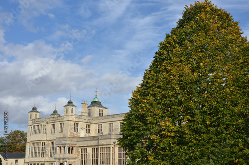 stately home with tree