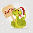 snake symbol of 2013 year