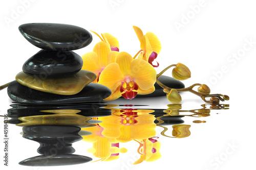 fototapete orchideen 88 fototapeten aufkleber poster. Black Bedroom Furniture Sets. Home Design Ideas
