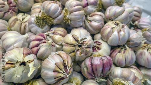 Aglio d Trapani (Allium Sativum)