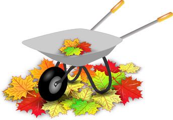 Schubkarre Herbstlaub