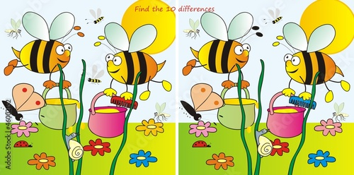 bees-10differences