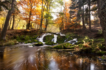 Wasserfall im bunten Herbstwald