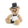 Classic teddy bear gentleman