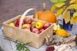 Gartentisch dekoriert mit Blumenvase, Obst und Gemüse