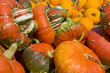 Load of Pumpkins and Squashes