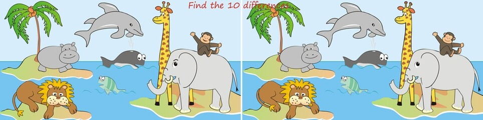 animals-10 differences