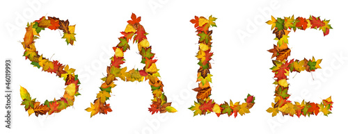 Word SALE made from autumn leaves, isolated on white background