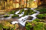 Fototapety Wasserfall im Herbstlicht