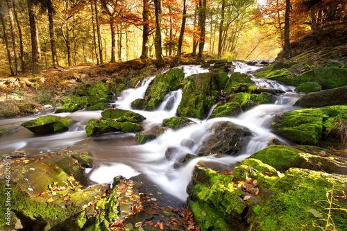 Zdjęcia na płótnie, fototapety na wymiar, obrazy na ścianę : Wasserfall im Herbstlicht