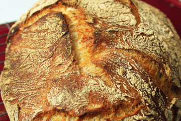 Closeup of Artisan Bread