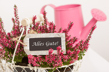 Beautiful basket with heather and an a pink watering-can