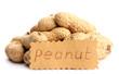 tasty peanuts, isolated on white