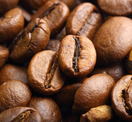 two roasted coffee beans macro