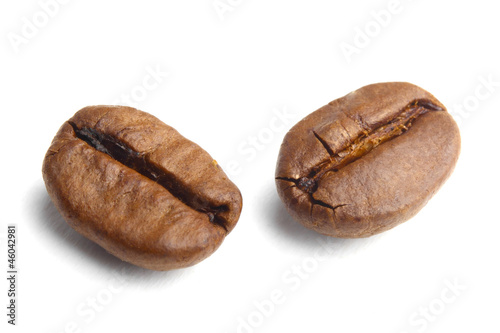 two coffee beans on white