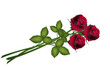 Wedding invitation, greeting card Valentine's Day, flower roses
