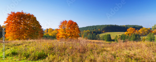 Autumnal scenery of meadow and lake in Poland