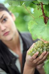 a woman picking a grape