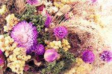 Fleurs d'automne.