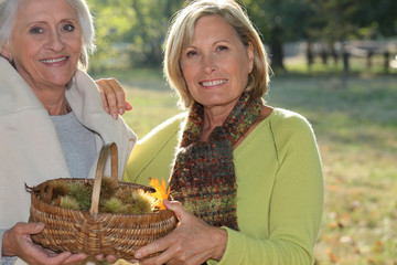 Two elderly females gathering chestnuts