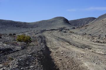 winding road in the Gobi Desert