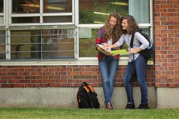 Students at school