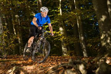 Mountainbiker fähr durch den Wald
