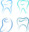 teeth set healthy vector illustration sketch
