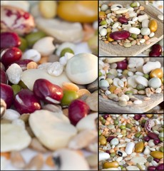 Collage - Mixed vegetables on a white background