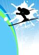 skisport - 10