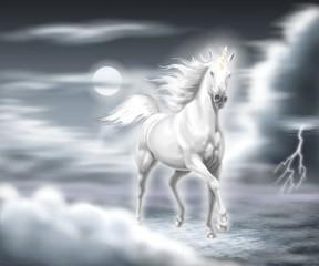 unicorno nel temporale