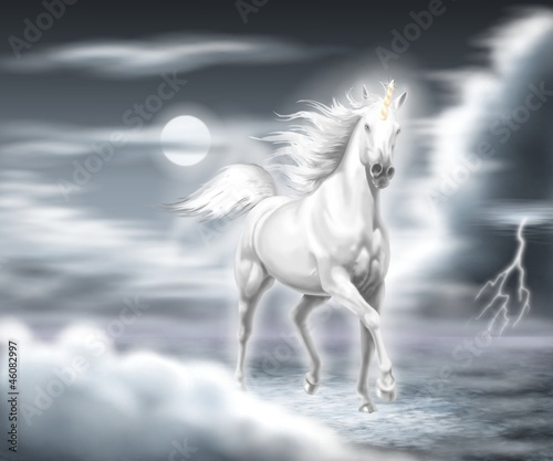 Leinwandbilder,einhorn,pferd,weiß,pferd