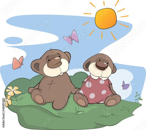 Bear cubs on a glade
