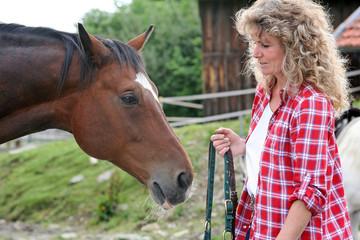 Das braune Pferd