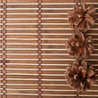 Pine cones on a background of bamboo
