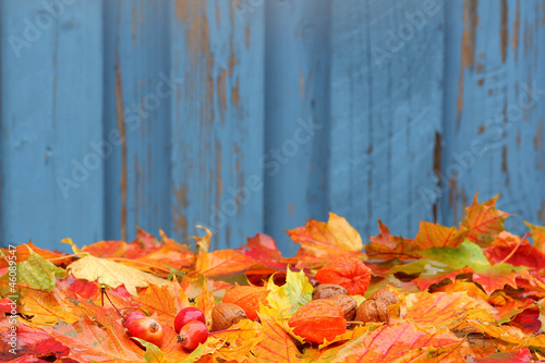 Herbstlaub, autumn foliage with background