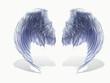 weißer Flügel 3