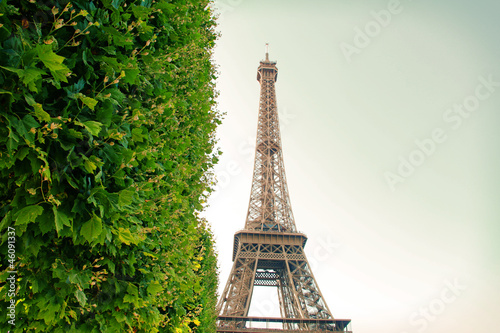 Eiffel Tower in Paris, France photographed at Champ de Mars