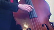 Playing double bass 1